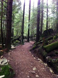 Alone on a cool, lush green trail surrounding Buntzen Lake, BC