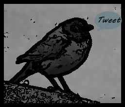 Tweeting Bird